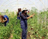 Kadın çiftçilere özel kampanya