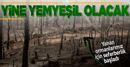 Türkiye yakılan ormanlarımız için tek yürek!