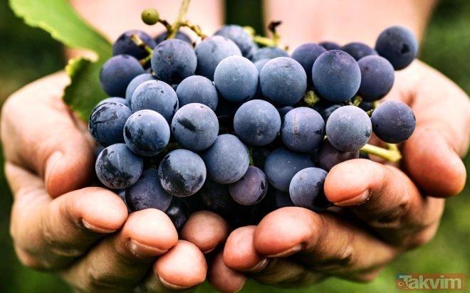 Kanserli hücrelerin düşmanı olan o besin herkesi şaşırttı! Kansere hangi besinler iyi gelir?