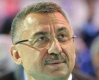 Başkan Yardımcısı Oktay'dan milli sporculara tebrik