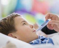 Yaz hastalıkları bizden korksun