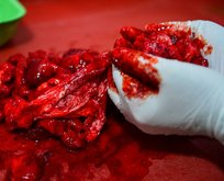 Gıda teröristlerinden mide bulandıran sahtekarlık!