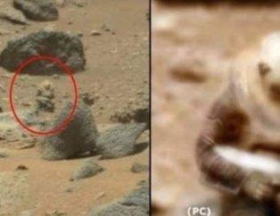 NASA ilk kez yayınladı! Kan donduran fotoğraflar... Mars'tan yeni kareler ve  Güneş'in lekesiz hali