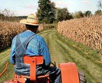 Çiftçilere destek ödemeleri başladı!