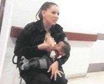 Ana polis