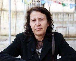 Görevden uzaklaştırılan HDP'li Çevik tutuklandı