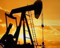 Petrol fiyatları hakkında flaş açıklama