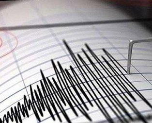 Pasifik Okyanusunda şiddetli deprem