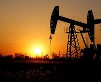 Goldman Sachs'tan kritik petrol uyarısı!