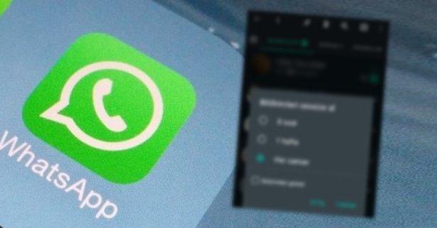 WhatsApp tek hamleyle herkesin beklediği özelliği getirdi!