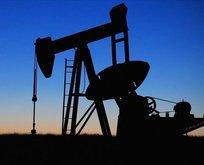 Brent petrolün varil fiyatı yatay seyrediyor