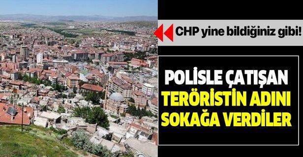 DHKP-C'li teröristin adını sokağa verdiler!