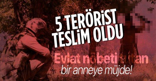5 terörist Habur'da güvenlik güçlerine teslim oldu