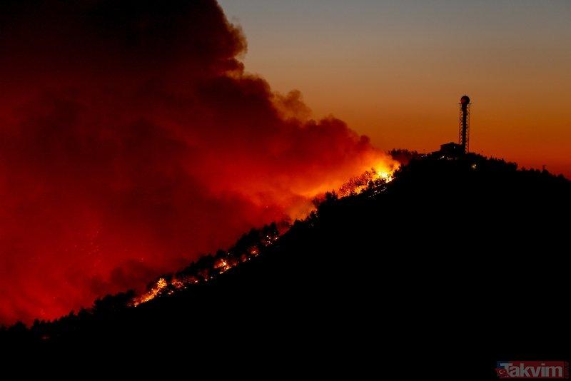 İzmir'de gergin bekleyiş! Karabağlar'daki orman yangını iki mahalleye yaklaştı