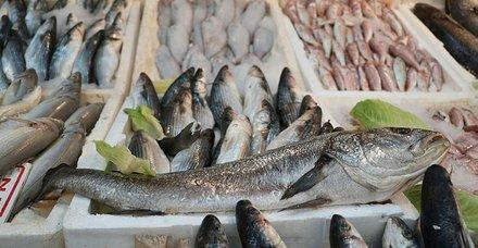 Av yasağı bitti! Tezgahlar balıkla doldu taştı