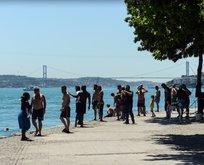 Uzmanlar uyardı! İstanbul'da sivrisinek istilasına dikkat!