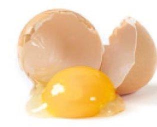 Yumurtanın sarısı bitirir kısırlığı!