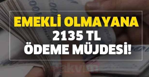 Emekli olmayana 2135 TL ödeme müjdesi!