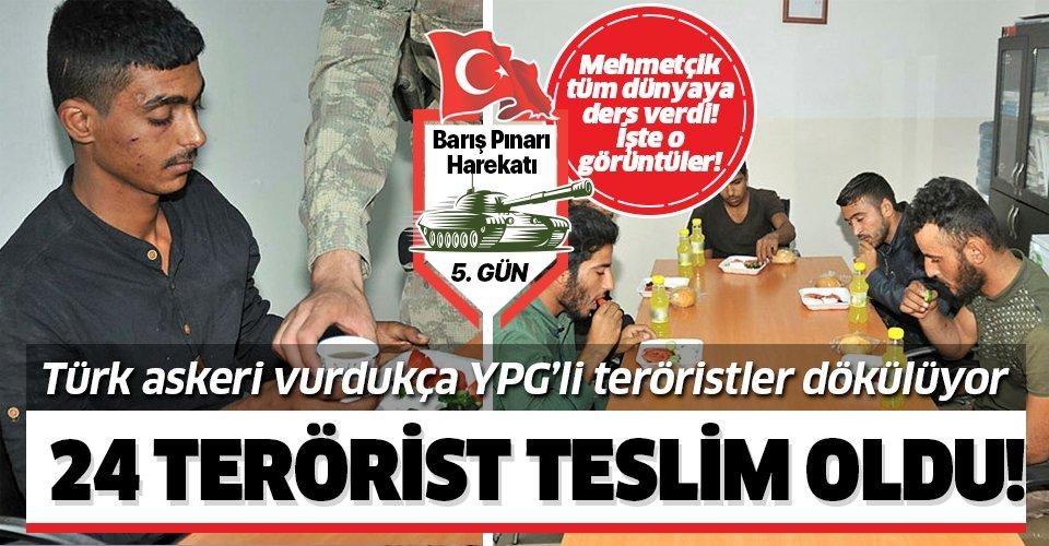 Son dakika: MSB açıkladı: 24 terörist teslim oldu!