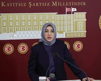 AK Partili Zengin'e hakaret eden Yaşar'a 7 yıl hapis istemi!