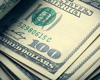 Hükümetten kritik dolar açıklaması
