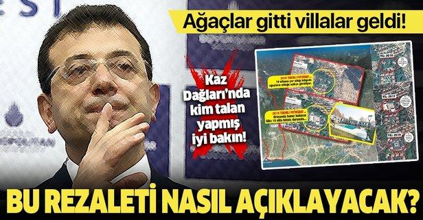İşte CHP ve Kaz Dağları gerçeği!