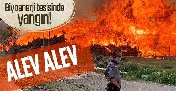 Son dakika: Afyonkarahisar'da biyoenerji tesisinde yangın!