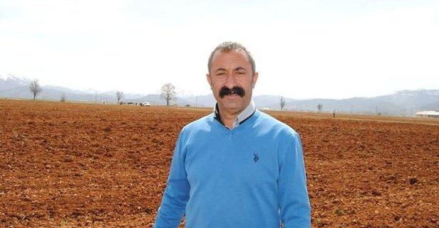 Mehmet Fatih Maçoğlu kimdir? Kaç yaşında ve nereli?