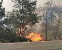 KKTC'de korkutan yangın! Türkiye harekete geçti!
