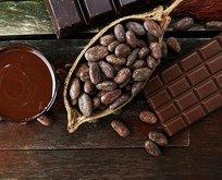 Ağız yarasına kakao yağı