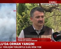 Bakan Pakdemirli yangınla ilgili son bilançoyu açıkladı
