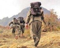 Ağrı kırsalında 3 terörist etkisiz hale getirildi