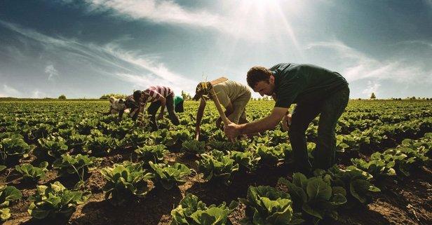 Çiftçiye mazot ve gübre desteği ödemesi ne zaman yatacak?
