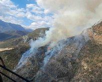 Anamur'da makilik alanda yangın