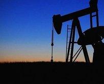 ABD'li petrol şirketlerinin değerlerinde büyük düşüş!