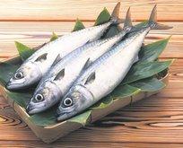 Balık kolesterol düşmanı