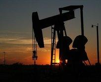 Kanada'da petrol krizi