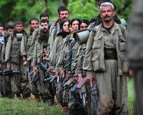 Tunceli'de öldürülen teröristlerin kimliği belli oldu