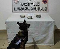 Mardin'de uyuşturucu operasyonu!