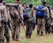 ABDnin PKK planı belli oldu