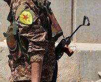 YPG/PKK Fransa'yı protesto eden halka ateş açtı!