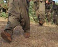 İçişleri Bakanlığı duyurdu: O terörist teslim oldu