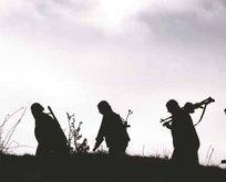 Yeşil listedeki PKK'lı terörist öldürüldü