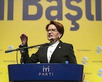 Akşener yeniden İP'e genel başkan oldu