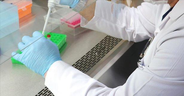 Pfizer Biontech aşısı kimin hangi ülkenin? Pfizer Biontech hisseleri ne kadar?