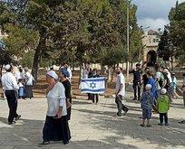 Fanatik Yahudiler Mescid-i Aksa'ya baskın düzenledi!