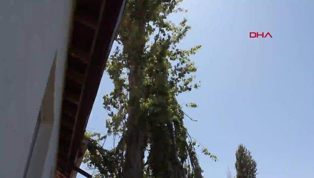 Ağaç budarken düşmemek için kendini ipe bağladı, feci şekilde can verdi! Yer: Aksaray...