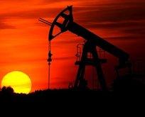 Brent petrol fiyatları kritik sınırın üstünde
