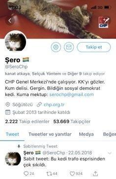 CHP'nin kedisi Şero Derya Köroğlu'ya tehdit savurdu