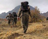 PKKnın kritik ismi öldürüldü!
